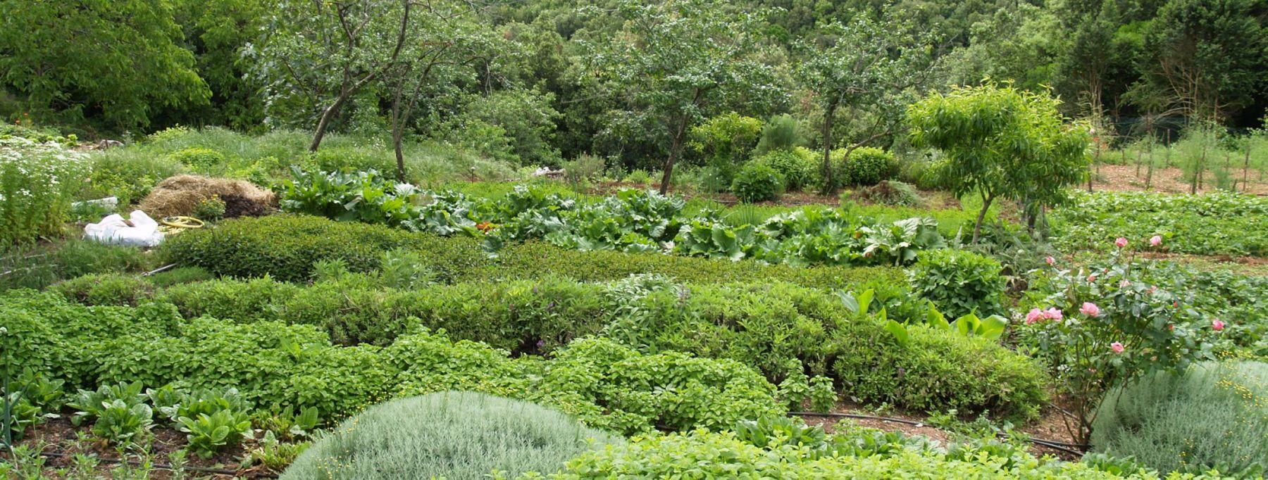 Les Jardins de Ladislas